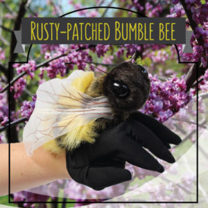 shoppingcardimages_bumblebee