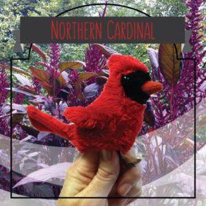 shoppingcardimages_cardinal