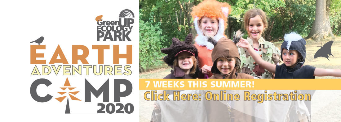 Earth Adventures Summer Camp at Ecology Park - 2020 online registration click here.