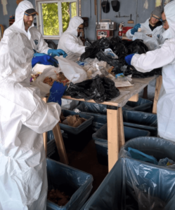 Fleming College students conducted a waste audit on behalf of the County of Peterborough, capturing waste generation habits by analyzing contents of garbage and recycling. Results showed that 50 per cent of residential garbage bags are filled with organic waste that could be composted instead of ending up in landfill.