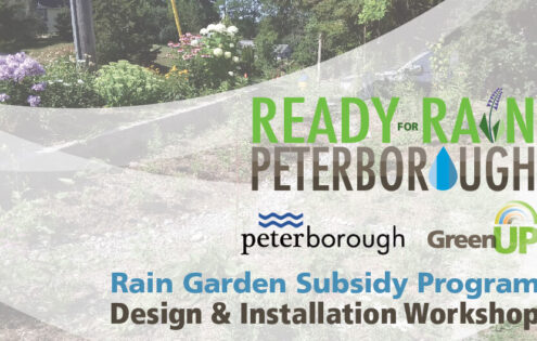 Rain Garden Design and Installation Workshop