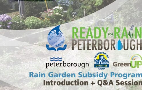 Rain Garden Introduction plus Question and Answer Session