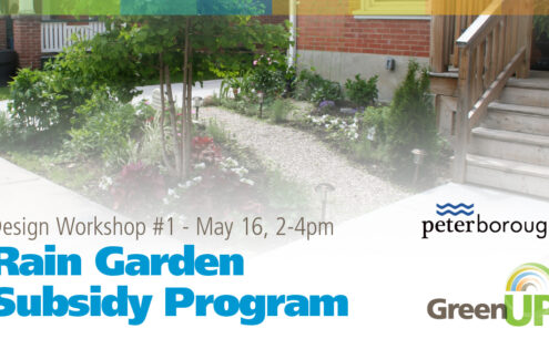 Rain Garden Subsidy Program – Design Workshop #1