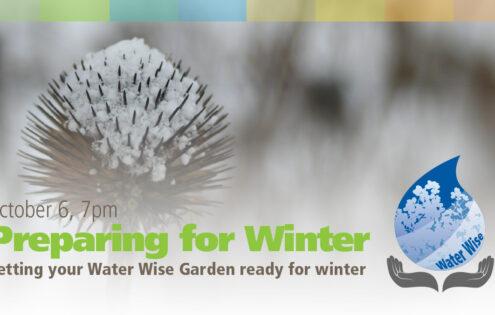 Preparing your Water Wise garden for winter